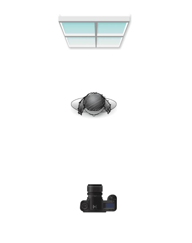 Boudoir Lighting Diagram For Back Lighting For Silhouette